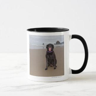 La Californie, Etats-Unis Mug