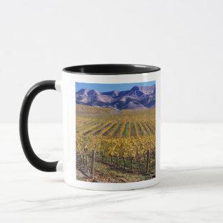 La Californie, le comté de San Luis_obispo, vallée Mug
