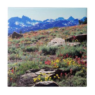 La Californie, sierra montagnes de Nevada 1 Carreau