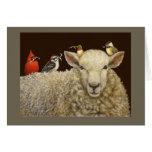 La carte de ramasseurs de laine
