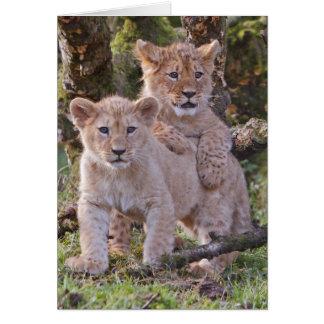 La carte de voeux de petits animaux de lion,