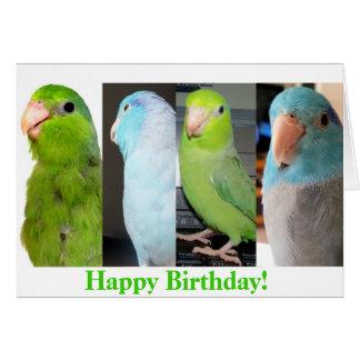 La carte de voeux d'oiseau de joyeux anniversaire