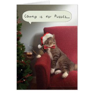 La carte drôle de chat de vacances, cataire est