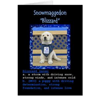 La carte nominative de la tempête de neige