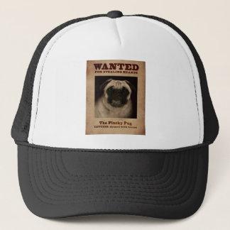 La casquette de baseball curieuse de chaton de
