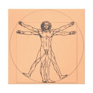 La copie de toile d'homme de Vitruvian