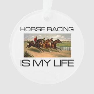 La course de chevaux SUPÉRIEURE est ma vie