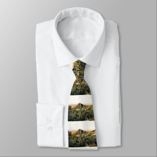 La cravate des hommes de paysage de coucher du