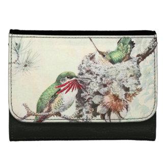 La faune d'animaux d'oiseaux de colibri fleurit le