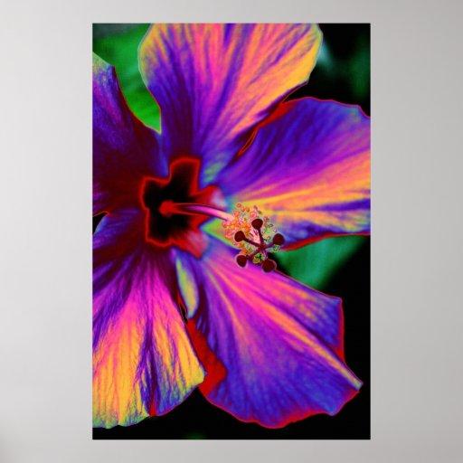 La fleur magique affiche