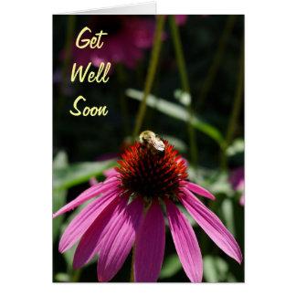 La fleur pourpre avec l'abeille obtiennent bientôt cartes