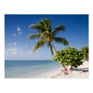 La Floride - carte postale de plage de sombrero