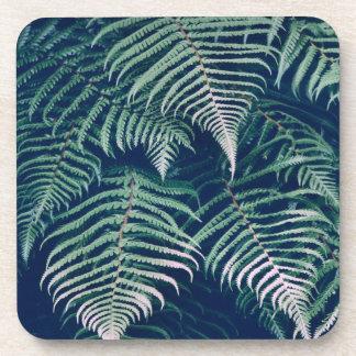 La fougère tropicale verte part du motif naturel dessous-de-verre
