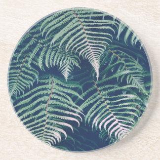 La fougère tropicale verte part du motif naturel dessous de verres