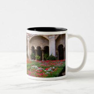 La France, St Remy De Provence, cloîtres à 2 Mug Bicolore