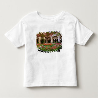 La France, St Remy De Provence, cloîtres à 2 T-shirts