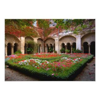 La France, St Remy De Provence, cloîtres à Photographie D'art
