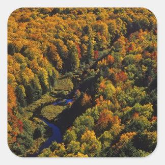 La grande rivière de carpe en automne au porc-épic sticker carré