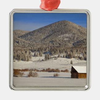 La grange en bois se repose dans la neige près de ornement carré argenté