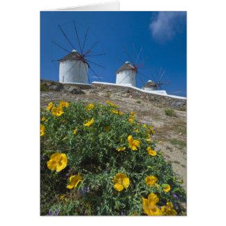 La Grèce, îles de Cyclades, Mykonos, fleurit près Carte De Vœux