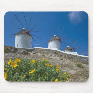La Grèce, îles de Cyclades, Mykonos, fleurit près Tapis De Souris