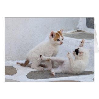 La Grèce, Mykonos, jeu de chatons Carte De Vœux