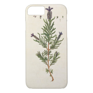La lavande française, plaquent 241 'd'un Herbal Coque iPhone 8/7