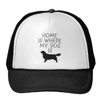 La maison est où mon chien est (le golden retrieve casquette de camionneur