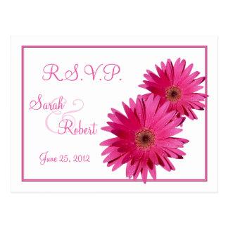 La marguerite rose de Gerbera fleurit la carte