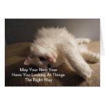 La meilleure carte de chat de nouvelle année