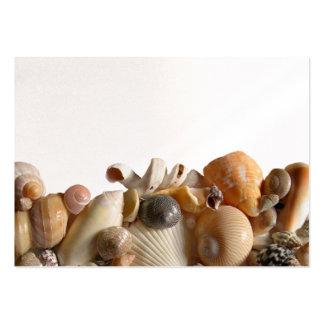 La mer Shell encadrent des cartes d'endroit Cartes De Visite Personnelles