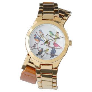 La montre colorée d'oiseaux chanteurs de