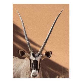 La Namibie, désert de Namib, Sossusvlei, Carte Postale