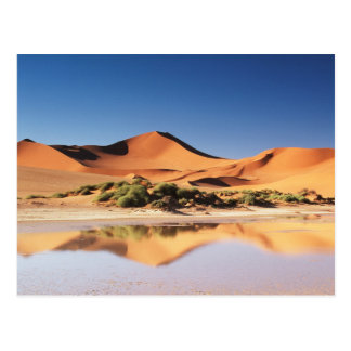 La Namibie, région de Sossusvlei, dunes de sable Carte Postale
