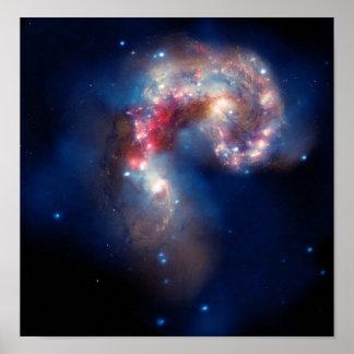 La NASA de galaxies d'antennes de NGC 4038 Poster