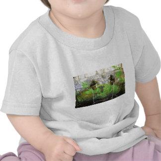 La nature est l'eau, l'eau est nature t-shirts