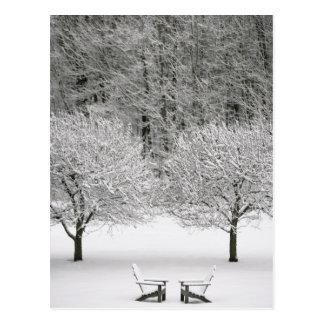 La neige a couvert le paysage carte postale