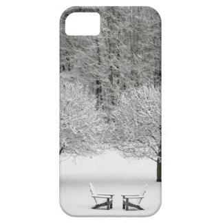 La neige a couvert le paysage étui iPhone 5