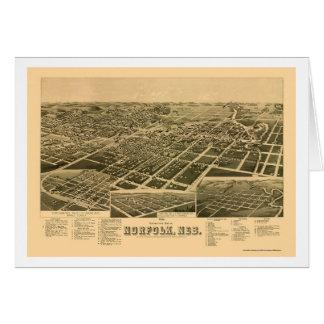 La Norfolk, carte panoramique de Ne - 1889