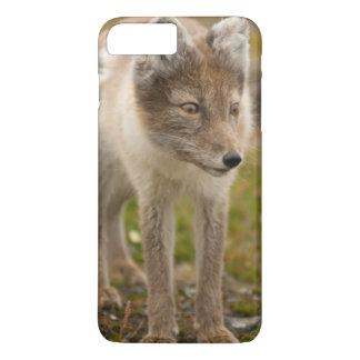 La Norvège, archipel du Svalbard, le Spitzberg 6 Coque iPhone 7 Plus