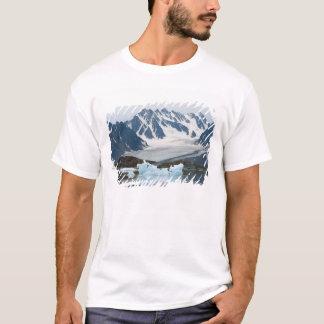 La Norvège, le glacier de recul et l'iceberg T-shirt