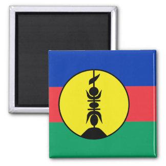La Nouvelle-Calédonie, République démocratique du Magnet Carré