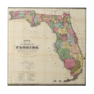 La nouvelle carte Drew's de l'État de Floride Petit Carreau Carré