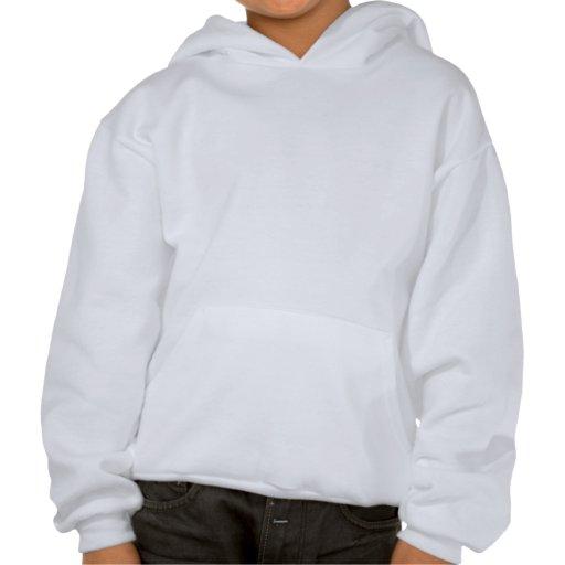 La palette de l'artiste sweatshirts à capuche