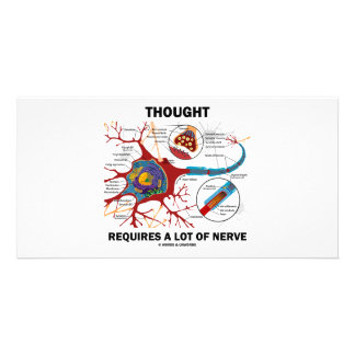 La pensée exige beaucoup de nerf (la synapse) photocartes
