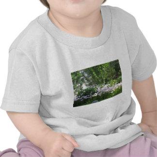 La photo de nature fleurit l'AMUSEMENT du New T-shirts