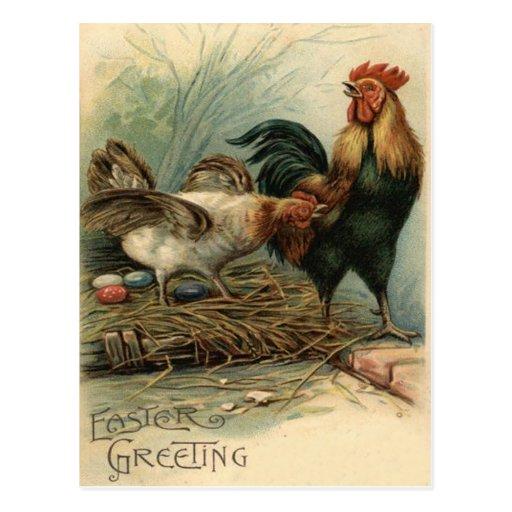 La poule Pâques de coq a coloré le nid peint d'oeu Carte Postale
