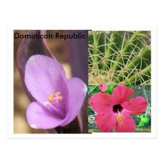 La République Dominicaine Carte Postale