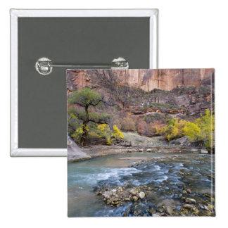 La rivière de Vierge en automne en parc national d Pin's