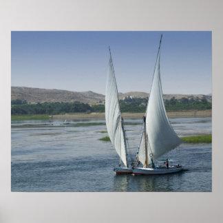 La rivière le Nil et bateaux à voile utilisés As Poster